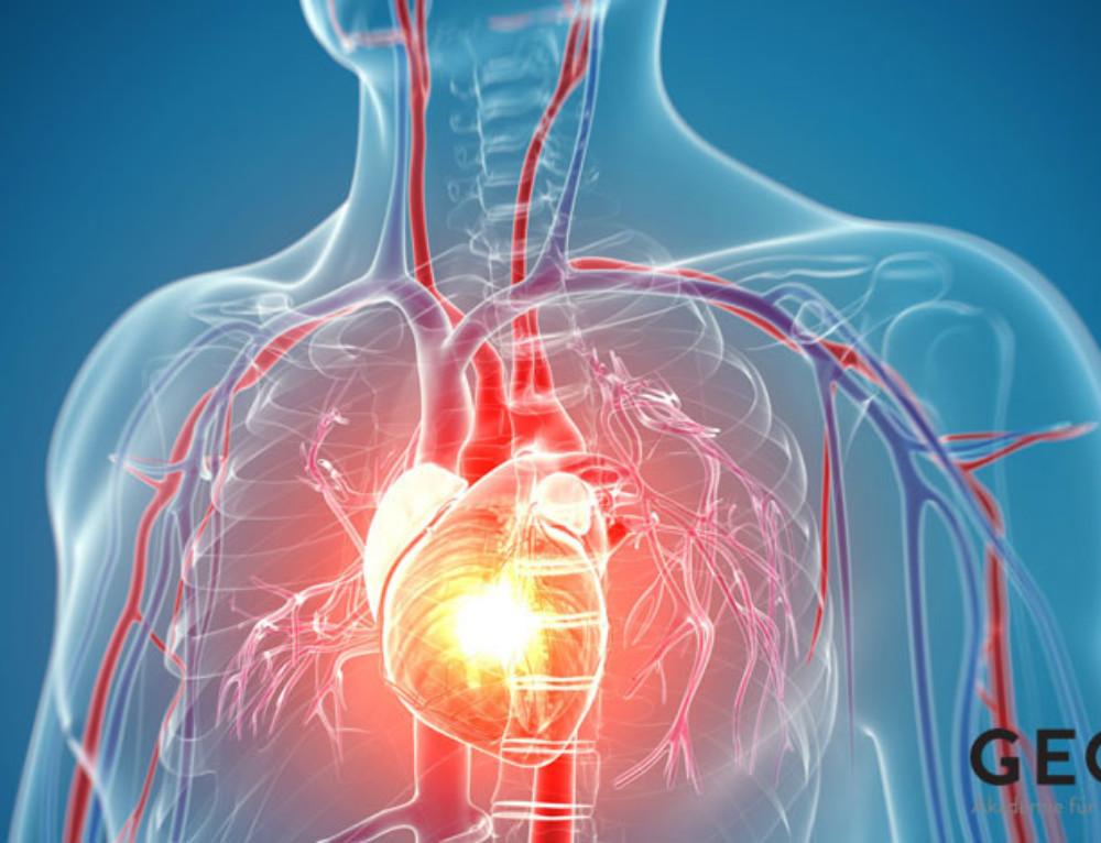 Kardiomiopatia wywołana stresem i oddziaływaniem masztów telefonii komórkowej