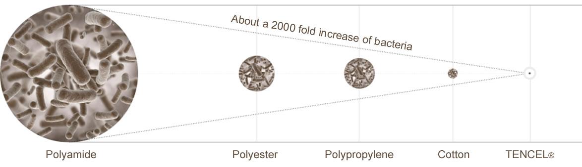 Różnice we wzroście bakterii pomiędzy włóknem TENCEL a innymi włóknami, takimi jak poliamid, poliester i bawełna